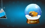 Merry Christmas offer for Dolphin - WAVE series